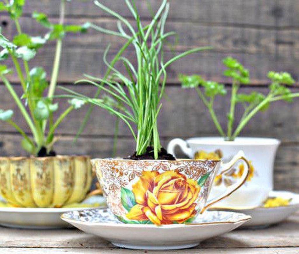 40 Inspiring Diy Teacup Mini Garden Ideas To Add Bliss To Your Home
